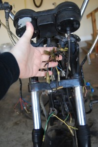 Main harness portion behind headlamp